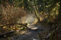 Spooky trail?