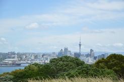 Auckland CBD (Central Business District)