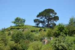 First view of Hobbiton