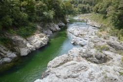Pelorus River!