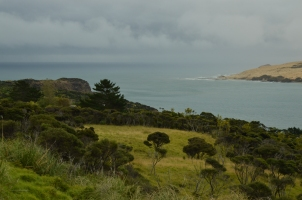 Looking out over Hokianga Harbour
